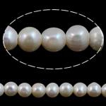 Round Beads kulturuar Pearl ujërave të ëmbla, Pearl kulturuar ujërave të ëmbla, natyror, e bardhë, Një, 8-9mm, : 2mm, :15Inç,  15Inç,