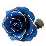 Lule artificiale Kryesore Dekor, Rrëshirë, Shape Tjera, ari praruar vërtetë, asnjë, blu, 300x65mm,  PC