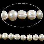 Barok Beads kulturuar Pearl ujërave të ëmbla, Pearl kulturuar ujërave të ëmbla, Oval, natyror, e bardhë, 12-13mm, : 0.8mm, :15Inç, 5Fillesat/Qese,  Qese