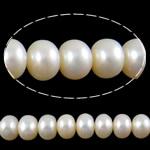 Button Beads ujërave të ëmbla kulturuar Pearl, Pearl kulturuar ujërave të ëmbla, Round, natyror, e bardhë, 9-10mm, : 0.8mm, :15.5Inç,  15.5Inç,