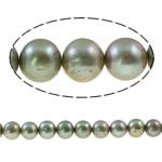 Round Beads kulturuar Pearl ujërave të ëmbla, Pearl kulturuar ujërave të ëmbla, i lyer, gri, Një, 9-10mm, : 0.8mm, :15.3Inç,  15.3Inç,