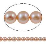 Round Beads kulturuar Pearl ujërave të ëmbla, Pearl kulturuar ujërave të ëmbla, natyror, rozë, AA, 10-11mm, : 1mm, :15.7Inç,  15.7Inç,