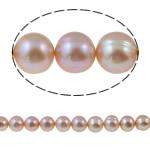 Barok Beads kulturuar Pearl ujërave të ëmbla, Pearl kulturuar ujërave të ëmbla, Round, natyror, rozë, 10-11mm, : 1mm, :15.3Inç,  15.3Inç,
