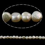 Barok Beads kulturuar Pearl ujërave të ëmbla, Pearl kulturuar ujërave të ëmbla, Nuggets, natyror, e bardhë, 5-6mm, : 1mm, : 14.5Inç,  14.5Inç,