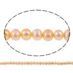 Barok Beads kulturuar Pearl ujërave të ëmbla, Pearl kulturuar ujërave të ëmbla, Nuggets, natyror, rozë, 6-7mm, : 1mm, :14Inç,  14Inç,