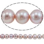 Round Beads kulturuar Pearl ujërave të ëmbla, Pearl kulturuar ujërave të ëmbla, natyror, vjollcë, AA, 12-15mm, : 0.8mm, : 16Inç,  16Inç,