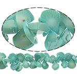 Beads Natyrore Coral, Coral Natyrore, Lot, i lyer, blu, 20x11x5mm, : 0.5mm, :16Inç, 10Fillesat/Shumë,  Shumë