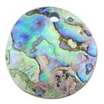 Pendants Natyrore predhë guaskë, Round Flat, asnjë, asnjë, asnjë, 35x35x5mm, : 4mm, 20PC/Shumë,  Shumë