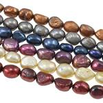 Barok Beads kulturuar Pearl ujërave të ëmbla, Pearl kulturuar ujërave të ëmbla, i lyer, ngjyra të përziera, 10-12mm, : 0.8mm, : 16Inç,  KG
