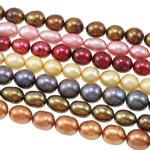 Rajs Beads ujërave të ëmbla kulturuar Pearl, Pearl kulturuar ujërave të ëmbla, Oriz, i lyer, ngjyra të përziera, 7-8mm, : 0.8mm, : 16Inç, 100Fillesat/Qese,  Qese
