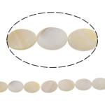 Beads Natyrore Shell ujërave të ëmbla, Predhë, Oval Flat, natyror, e bardhë, 17x24x4.50mm, : 1mm, : 15.3Inç, 10Fillesat/Qese,  Qese