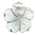 Pendants Natyrore Zi Shell, Lule, Gdhendur, asnjë, asnjë, 45x45x2.50mm, : 1.5mm, 10PC/Shumë,  Shumë