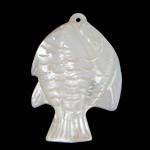 Pendants Natyrore White Shell, Peshk, Gdhendur, asnjë, asnjë, 22x32x7mm, : 1mm, 5PC/Shumë,  Shumë