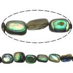 Beads predhë guaskë, Shell Guaskë, Drejtkëndësh, asnjë, asnjë, asnjë, 7.5-9X6-8X4-5mm, : 1mm, :16Inç, 5Fillesat/Shumë,  Shumë