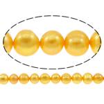 Patates Beads ujërave të ëmbla kulturuar Pearl, Pearl kulturuar ujërave të ëmbla, i lyer, i verdhë, 10-11mm, : 0.8mm, : 14.3Inç,  14.3Inç,