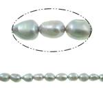 Barok Beads kulturuar Pearl ujërave të ëmbla, Pearl kulturuar ujërave të ëmbla, 10-11mm, : 1mm, : 14.5Inç,  14.5Inç,