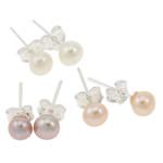 Ujërave të ëmbla Pearl Ring Finger, Pearl kulturuar ujërave të ëmbla, with Tunxh, Round, natyror, ngjyra të përziera, 4.5-5mm, 22x14x3.5cm, 72Çiftet/Kuti,  Kuti