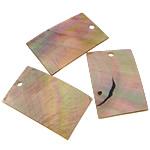 Pendants Shell, Deti Shell, Drejtkëndësh, asnjë, asnjë, asnjë, 27x40x1mm, : 3mm, 50PC/Shumë,  Shumë