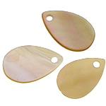 Pendants Shell, Deti Shell, Lot, asnjë, asnjë, asnjë, 9x14x1mm, : 1mm, 200PC/Shumë,  Shumë