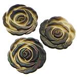 Cabochons Shell, Black Shell, Lule, Gdhendur, mbrapa banesë, asnjë, 23x23x2.50mm, 50PC/Shumë,  Shumë