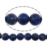 Beads lapis lazuli, Natyrore lapis lazuli, Round, asnjë, asnjë, 6mm, : 1mm, :16Inç, 5Fillesat/Shumë, 73 Pcs/Strand,  Shumë