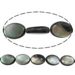 Beads Zi Shell, Black Shell, Oval Flat, asnjë, asnjë, asnjë, 10x14x5mm, : 1mm, :16Inç, 5Fillesat/Shumë, 28 Pcs/Strand,  Shumë