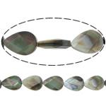 Beads Zi Shell, Black Shell, Lot, asnjë, faceted, asnjë, 14x10x4mm, : 1mm, :15.5Inç, 5Fillesat/Shumë, 28 Pcs/Strand,  Shumë