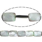 Beads Zi Shell, Black Shell, Drejtkëndësh, asnjë, faceted, asnjë, 18x13x4mm, : 1.5mm, :16Inç, 5Fillesat/Shumë, 22 Pcs/Strand,  Shumë