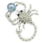 Pearl ujërave të ëmbla karficë, Pearl kulturuar ujërave të ëmbla, with Alloy zink, Akrepi, ngjyrë platin praruar, me diamant i rremë, asnjë, 41x56x18.50mm,  PC