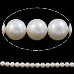 Round Beads kulturuar Pearl ujërave të ëmbla, Pearl kulturuar ujërave të ëmbla, natyror, asnjë, e bardhë, AAA, 11-12mm, : 1mm, :15.7Inç,  15.7Inç,
