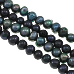 Barock kultivierten Süßwassersee Perlen, Natürliche kultivierte Süßwasserperlen, gemischte Farben, Grade A, 5-6mm, Bohrung:ca. 0.8mm, verkauft per 14.5 ZollInch Strang