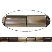 Turbanschnecken Perle, Zylinder, 5x3mm, Bohrung:ca. 1mm, Länge:ca. 16 ZollInch, 10SträngeStrang/Menge, verkauft von Menge