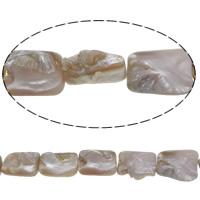 Natürliche Rosa Muschelperlen, 20.5-21.5x14-16x9-12mm, Bohrung:ca. 1mm, Länge:ca. 16 ZollInch, 5SträngeStrang/Menge, ca. 20PCs/Strang, verkauft von Menge