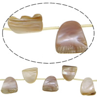 Natürliche Rosa Muschelperlen, 19.5-23.5x18-24.5x6-7mm, Bohrung:ca. 1.5mm, Länge:ca. 15.5 ZollInch, 5SträngeStrang/Menge, ca. 15PCs/Strang, verkauft von Menge