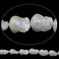 Kultivierte kernhaltige Süßwasserperlen, kultivierte Süßwasser kernhaltige Perlen, Keishi, natürlich, weiß, 15-18mm, Bohrung:ca. 0.8mm, verkauft per ca. 15.7 ZollInch Strang
