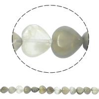 Natürliche graue Achat Perlen, Grauer Achat, Herz, 12x5mm, Bohrung:ca. 1.5mm, ca. 36PCs/Strang, verkauft per ca. 15.7 ZollInch Strang
