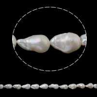 Kultivierte kernhaltige Süßwasserperlen, kultivierte Süßwasser kernhaltige Perlen, Keishi, natürlich, weiß, 15-17mm, Bohrung:ca. 0.8mm, verkauft per ca. 15.3 ZollInch Strang