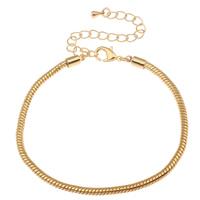 Messing European Armband, Messing Karabinerverschluss, mit Verlängerungskettchen von 8cm, goldfarben plattiert, verschiedene Größen vorhanden, frei von Nickel, Blei & Kadmium, 3mm, 10SträngeStrang/Tasche, verkauft von Tasche