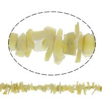 Natürliche gelbe Muschelperlen, Bruchstück, 1x7mm-5x15x7mm, Bohrung:ca. 1mm, ca. 80PCs/Strang, verkauft per ca. 15.5 ZollInch Strang