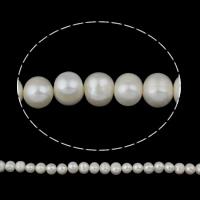 Lagerluft Süßwasser Perlen, Natürliche kultivierte Süßwasserperlen, Kartoffel, natürlich, weiß, 10-11mm, Bohrung:ca. 0.8mm, verkauft per ca. 16 ZollInch Strang