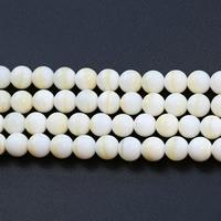 Natürliches Gold Tridacna Perle, rund, verschiedene Größen vorhanden, verkauft per ca. 15.5 ZollInch Strang