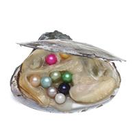 Süßwasser kultivierte Liebe wünschen Perlenaustern, Perlen, keine, 7-8mm, 5PCs/Menge, verkauft von Menge