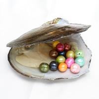 Süßwasser kultivierte Liebe wünschen Perlenaustern, Perlen, keine, 8-9mm, Bohrung:ca. 0.8mm, verkauft von PC