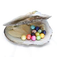Süßwasser kultivierte Liebe wünschen Perlenaustern, Perlen, keine, 7-8mm, Bohrung:ca. 0.8mm, verkauft von PC