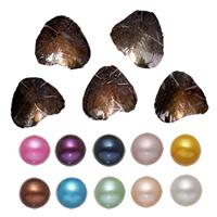 Süßwasser kultivierte Liebe wünschen Perlenaustern, Perlen, Kartoffel, gemischte Farben, 7-8mm, 10PCs/Menge, verkauft von Menge