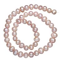 Natürliche Süßwasser, lose Perlen, Natürliche kultivierte Süßwasserperlen, violett, 7-8mm, Bohrung:ca. 0.8mm, verkauft per ca. 15 ZollInch Strang
