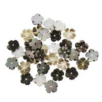 Schwarze Muschelperlen, Blume, 8x1.5mm, Bohrung:ca. 0.5mm, 50PCs/Tasche, verkauft von Tasche