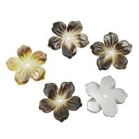 Schwarze Muschelperlen, Blume, 20x2mm, Bohrung:ca. 1mm, 50PCs/Tasche, verkauft von Tasche