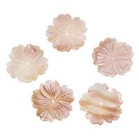 Natürliche Rosa Muschelperlen, verschiedene Größen vorhanden, Bohrung:ca. 1-1.5mm, 10PCs/Tasche, verkauft von Tasche