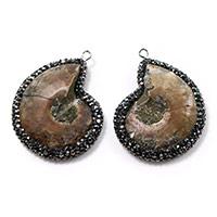 Ammonit fossile Edelstein Anhänger, Trompete Muschel, mit Ton & Messing, silberfarben plattiert, natürliche & gemischt, 31x41x8mm, Bohrung:ca. 2mm, 3PCs/Menge, verkauft von Menge
